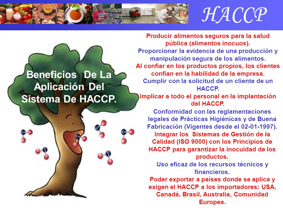 Beneficios De La Aplicación Del Sistema De HACCP. Conformidad con las reglamentaciones legales de Prácticas Higiénicas y de Buena Fabricación (Vigente