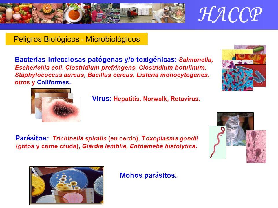 Microorganismos alterantes e indicadores No indica peligro al producto Su objetivo Defectos en prácticas Sanitarias Aerobios y Anaerobios Mohos y Levaduras Enterococos (estreptococos) Coliformes Escherichia coliOrigen Fecal
