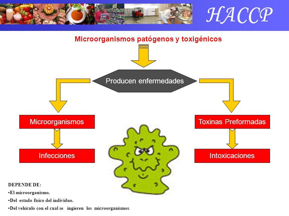 Microorganismos patógenos y toxigénicos Producen enfermedades DEPENDE DE: El microorganismo. Del estado físico del individuo. Del vehículo con el cual