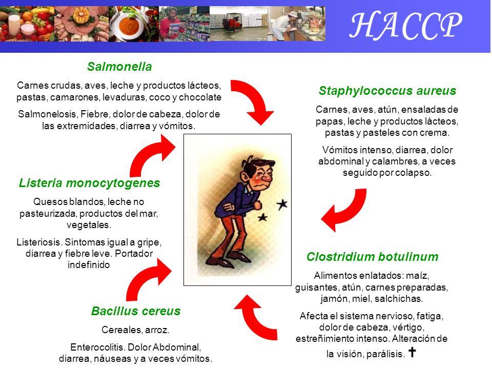 Salmonella Carnes crudas, aves, leche y productos lácteos, pastas, camarones, levaduras, coco y chocolate Salmonelosis, Fiebre, dolor de cabeza, dolor