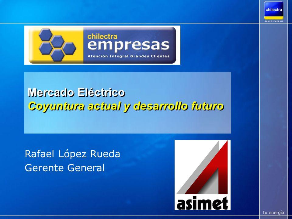 Chilectra es parte de un Grupo Líder en Latam Líder en los más importantes mercados de Latinoamérica Participación de mercado