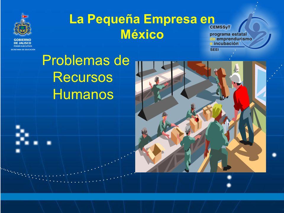 La Pequeña Empresa en México Problemas de Recursos Humanos