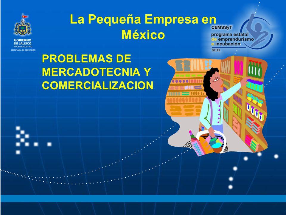 La Pequeña Empresa en México PROBLEMAS DE MERCADOTECNIA Y COMERCIALIZACION
