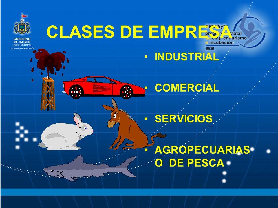 CLASES DE EMPRESA INDUSTRIAL COMERCIAL SERVICIOS AGROPECUARIAS O DE PESCA