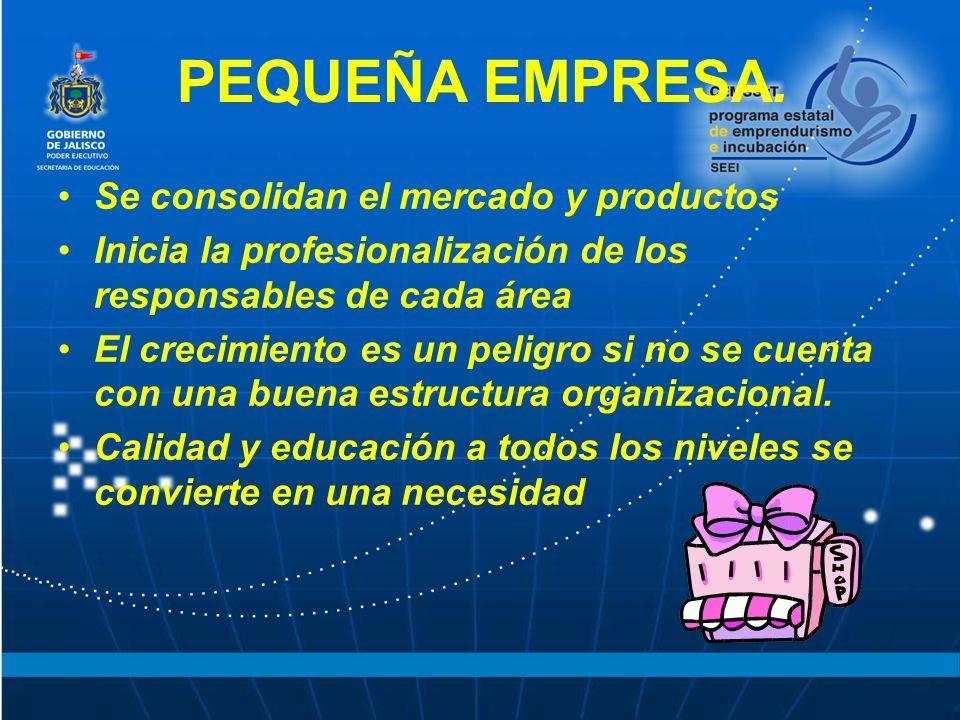 PEQUEÑA EMPRESA. Se consolidan el mercado y productos Inicia la profesionalización de los responsables de cada área El crecimiento es un peligro si no