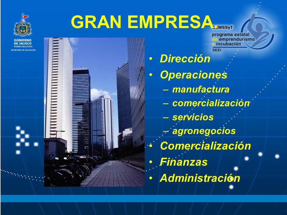 GRAN EMPRESA. Dirección Operaciones –manufactura –comercialización –servicios –agronegocios Comercialización Finanzas Administración
