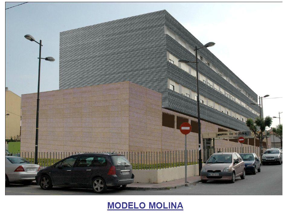 MODELO MOLINA