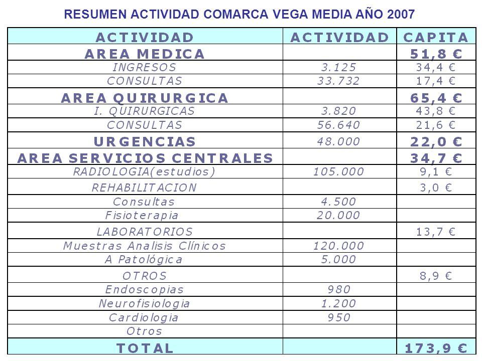 RESUMEN ACTIVIDAD COMARCA VEGA MEDIA AÑO 2007