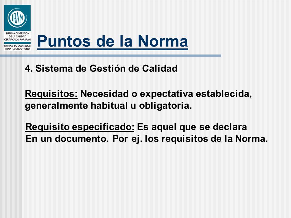 Puntos de la Norma 4. Sistema de Gestión de Calidad Requisitos: Necesidad o expectativa establecida, generalmente habitual u obligatoria. Requisito es