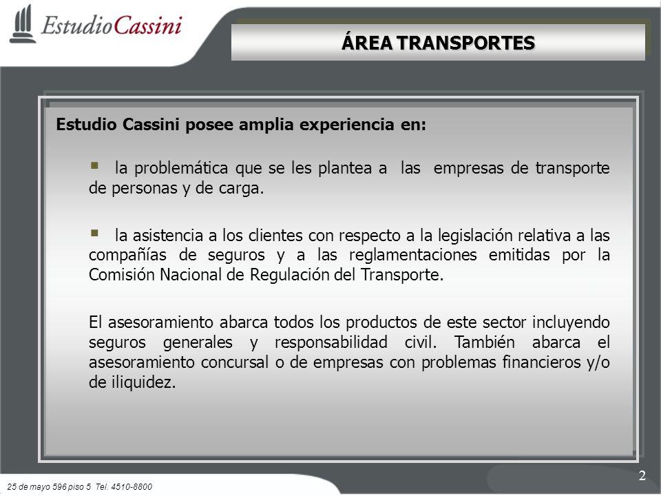 ÁREA TRANSPORTES Estudio Cassini posee amplia experiencia en: la problemática que se les plantea a las empresas de transporte de personas y de carga.