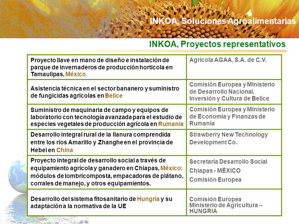 INKOA, Proyectos representativos Proyecto llave en mano de diseño e instalación de parque de invernaderos de producción horticola en Tamaulipas, Méxic