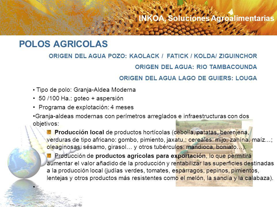 ORIGEN DEL AGUA POZO: KAOLACK / FATICK / KOLDA/ ZIGUINCHOR ORIGEN DEL AGUA: RIO TAMBACOUNDA ORIGEN DEL AGUA LAGO DE GUIERS: LOUGA Tipo de polo: Granja
