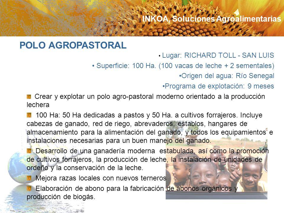 Lugar: RICHARD TOLL - SAN LUIS Superficie: 100 Ha. (100 vacas de leche + 2 sementales) Origen del agua: Río Senegal Programa de explotación: 9 meses C