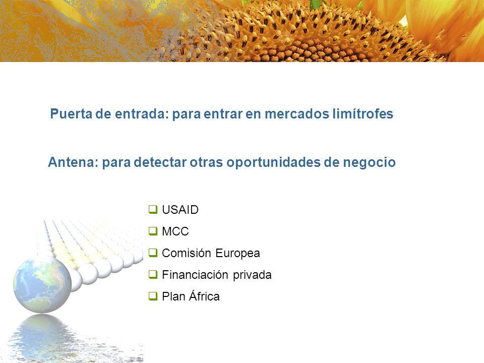 USAID MCC Comisión Europea Financiación privada Plan África Puerta de entrada: para entrar en mercados limítrofes Antena: para detectar otras oportuni