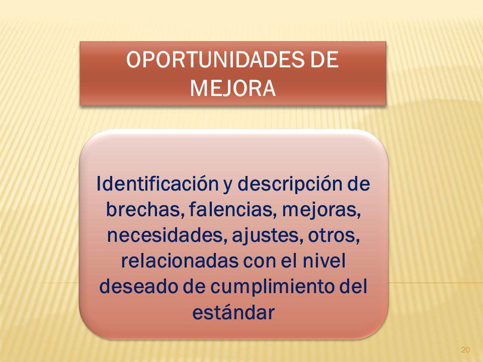 OPORTUNIDADES DE MEJORA Identificación y descripción de brechas, falencias, mejoras, necesidades, ajustes, otros, relacionadas con el nivel deseado de