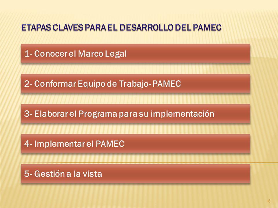1- Conocer el Marco Legal 2- Conformar Equipo de Trabajo- PAMEC 3- Elaborar el Programa para su implementación 4- Implementar el PAMEC 5- Gestión a la