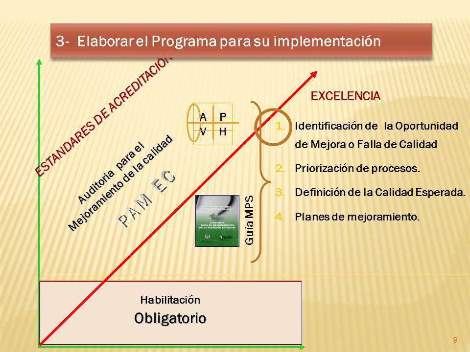 EXCELENCIA Obligatorio Auditoria para el Mejoramiento de la calidad ESTANDARES DE ACREDITACIÓN 1.Identificación de la Oportunidad de Mejora o Falla de