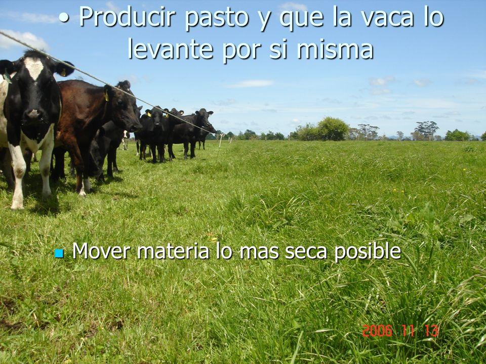 Producir pasto y que la vaca lo levante por si misma Producir pasto y que la vaca lo levante por si misma Mover materia lo mas seca posible Mover materia lo mas seca posible