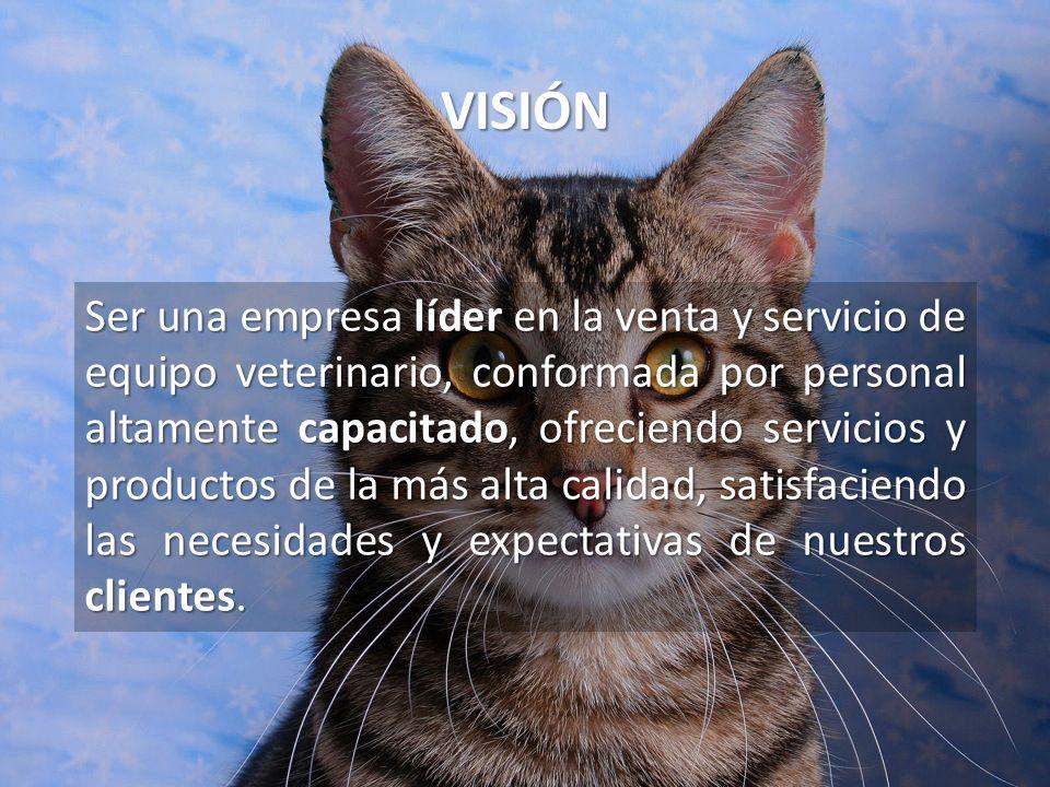 VISIÓN Ser una empresa líder en la venta y servicio de equipo veterinario, conformada por personal altamente capacitado, ofreciendo servicios y produc