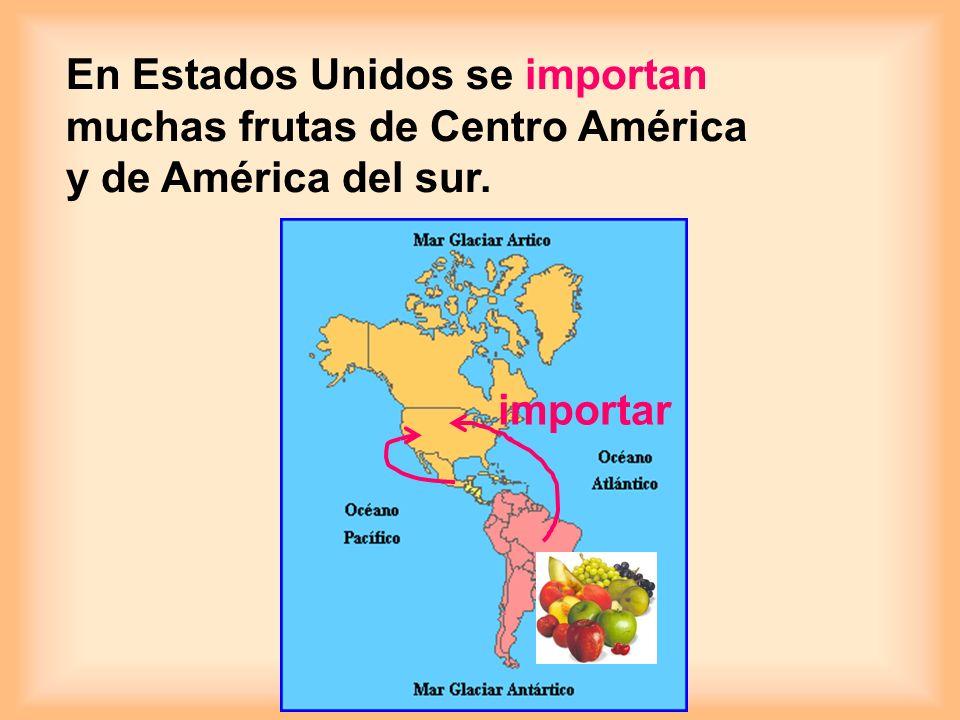 son frutas tropicales. los plátanos las piñas los mangos las papayas