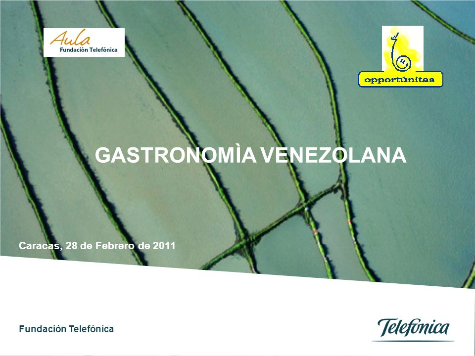 Fundación Telefónica 1 Índice GASTRONOMIA VENEZOLANA OBJETIVOS CONTENIDOS ACTIVIDADES GENERALES ACTIVIDADES LECTO-ESCRITURA ACTIVIDADES POR GRUPOS DE EDAD INDICADORES RECURSOS RESULTADOS POR AULAS 01 02 03