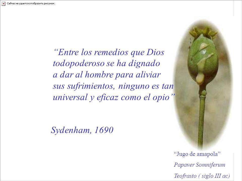 Entre los remedios que Dios todopoderoso se ha dignado a dar al hombre para aliviar sus sufrimientos, ninguno es tan universal y eficaz como el opio J