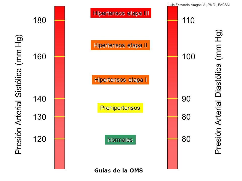 Luis Fernando Aragón V., Ph.D., FACSM Precauciones Para pacientes en categorías de alto riesgo sin enfermedad cardiovascular, o con hipertensión Etapa 3 (PA>180/110 mmHg), que practican entrenamiento moderado: –Se podrían beneficiar de una prueba de esfuerzo (pero sólo luego de iniciar terapia farmacológica) antes de iniciar el entrenamiento.