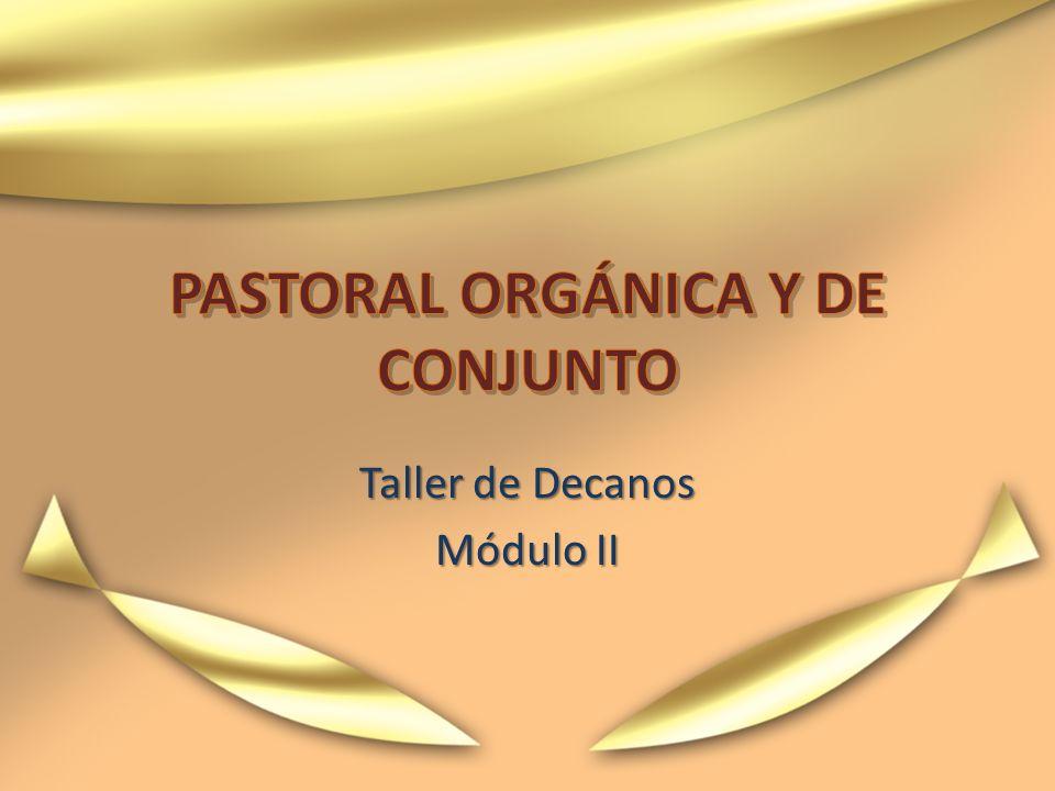 ¿Un conjunto de pastorales o una pastoral de conjunto.