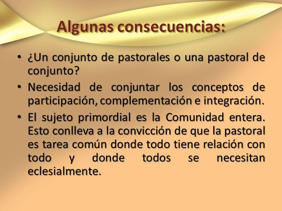 ¿Un conjunto de pastorales o una pastoral de conjunto? ¿Un conjunto de pastorales o una pastoral de conjunto? Necesidad de conjuntar los conceptos de