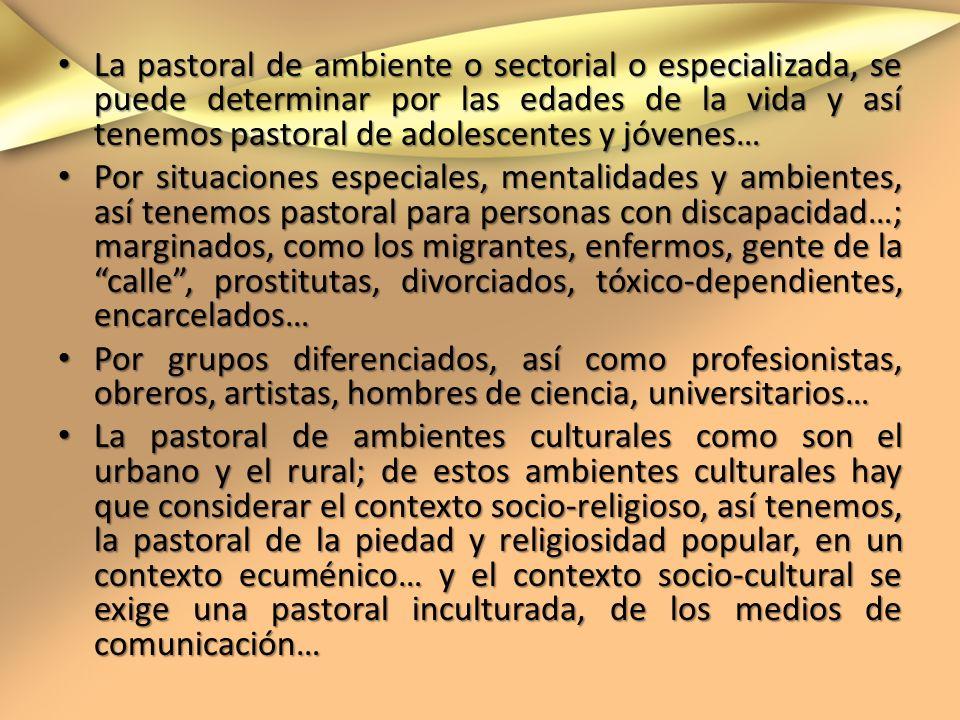 La pastoral de ambiente o sectorial o especializada, se puede determinar por las edades de la vida y así tenemos pastoral de adolescentes y jóvenes… L