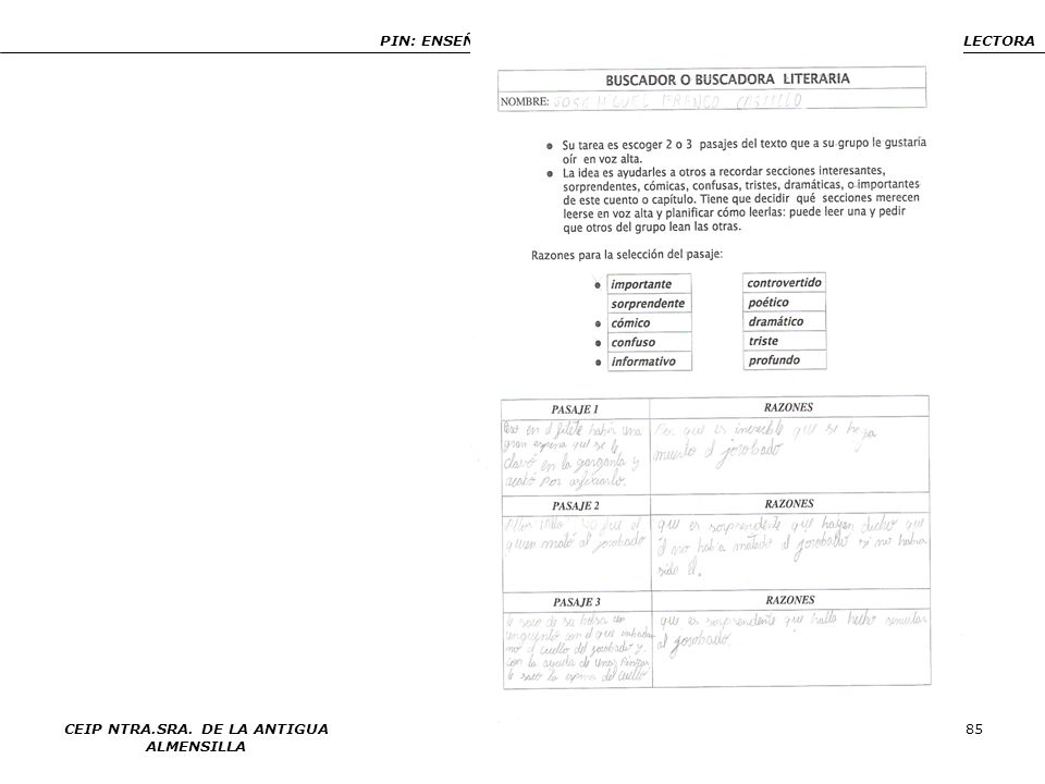 PIN: ENSEÑANZA Y APRENDIZAJE DE ESTRATEGIAS DE COMPRENSIÓN LECTORA CEIP NTRA.SRA. DE LA ANTIGUA ALMENSILLA 85