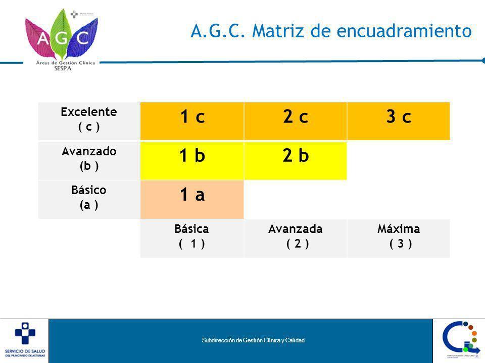 Subdirección de Gestión Clínica y Calidad A.G.C.