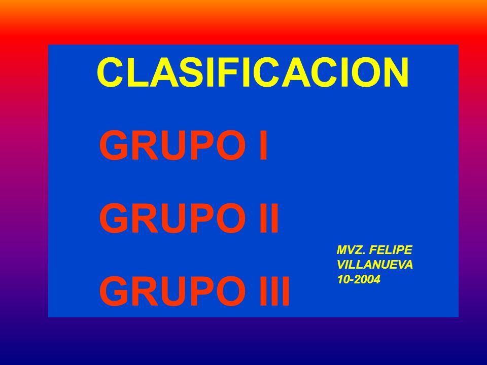 CLASIFICACION GRUPO I GRUPO II GRUPO III MVZ. FELIPE VILLANUEVA 10-2004