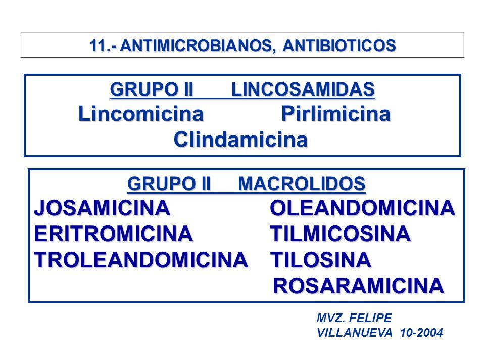 11.- ANTIMICROBIANOS, ANTIBIOTICOS GRUPO II LINCOSAMIDAS Lincomicina Pirlimicina Lincomicina Pirlimicina Clindamicina Clindamicina GRUPO II MACROLIDOS