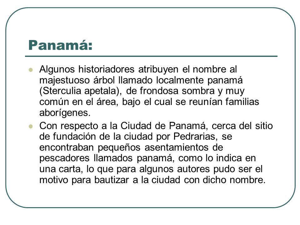 Panamá: Algunos historiadores atribuyen el nombre al majestuoso árbol llamado localmente panamá (Sterculia apetala), de frondosa sombra y muy común en