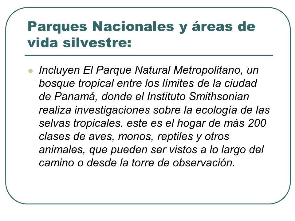Parques Nacionales y áreas de vida silvestre: Incluyen El Parque Natural Metropolitano, un bosque tropical entre los límites de la ciudad de Panamá, d
