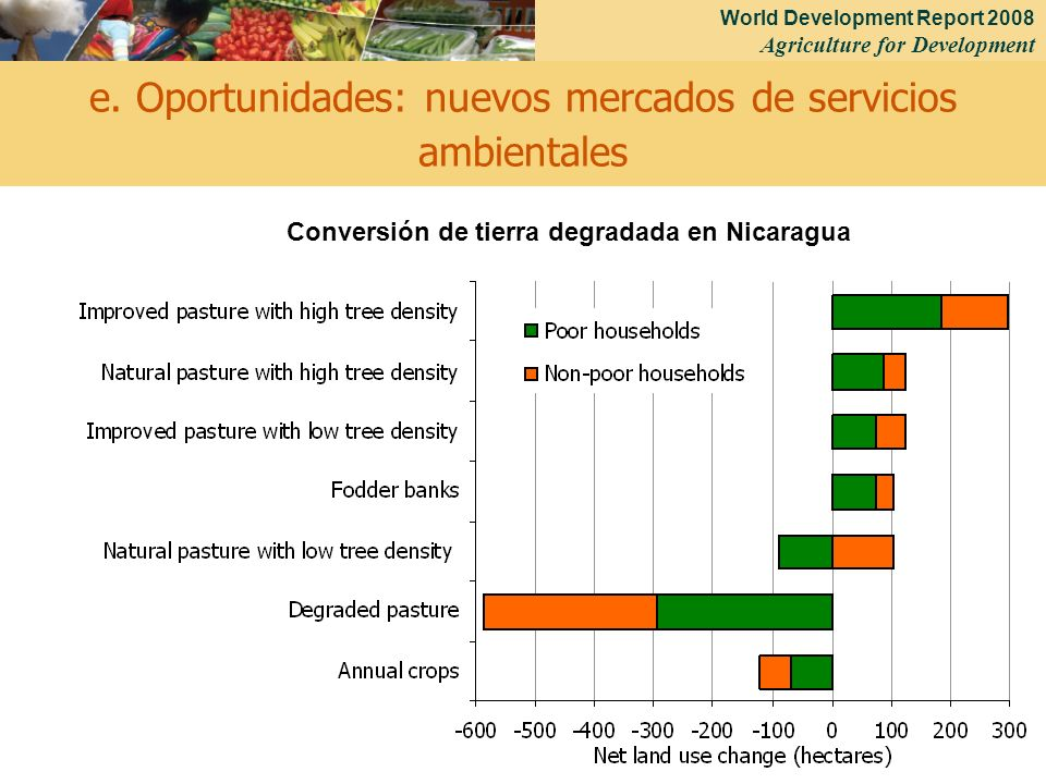 World Development Report 2008 Agriculture for Development 24 e. Oportunidades: nuevos mercados de servicios ambientales Conversión de tierra degradada