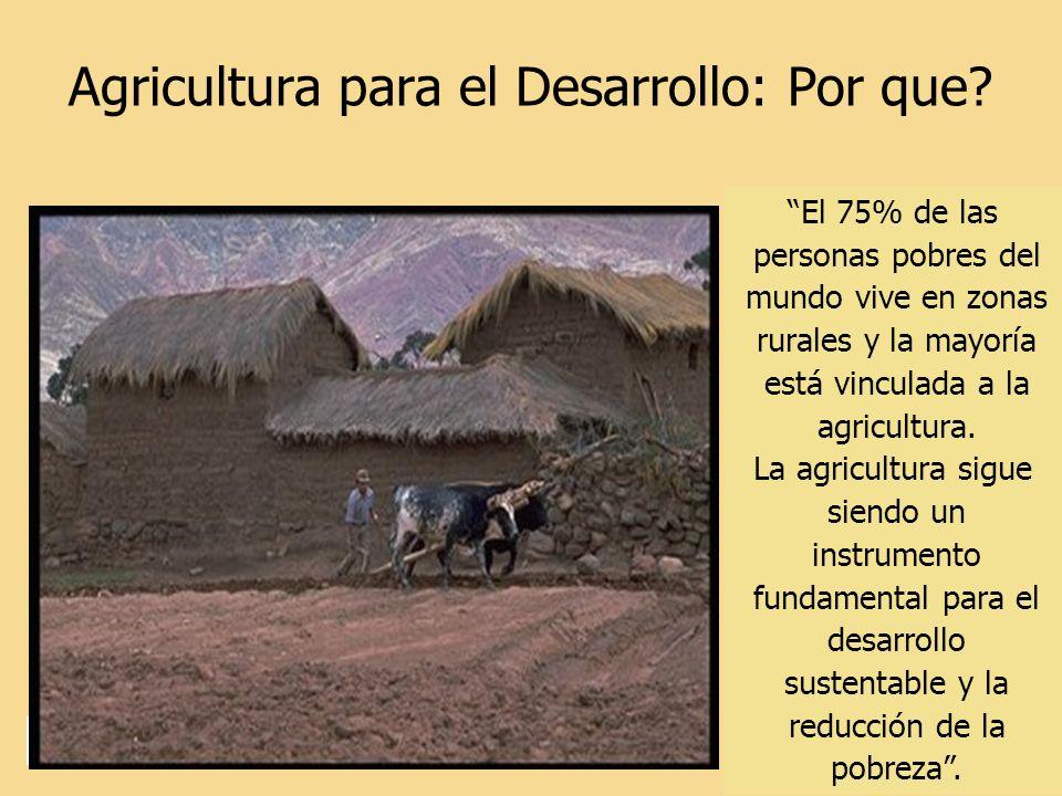 Agricultura para el Desarrollo: Por que? El 75% de las personas pobres del mundo vive en zonas rurales y la mayoría está vinculada a la agricultura. L