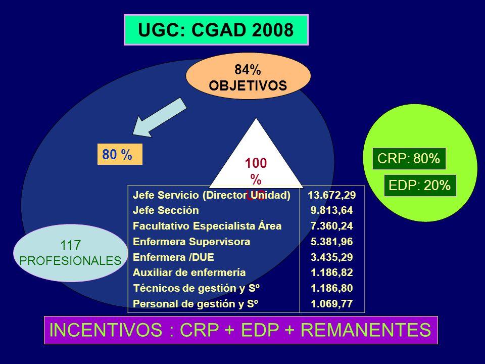 UGC: CGAD 2008 100 % UG 84% OBJETIVOS 80 % CRP: 80% EDP: 20% INCENTIVOS : CRP + EDP + REMANENTES 117 PROFESIONALES Jefe Servicio (Director Unidad) Jef
