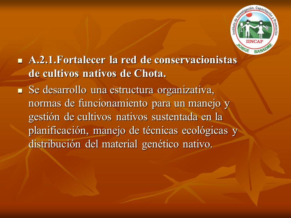 A.2.1.Fortalecer la red de conservacionistas de cultivos nativos de Chota. A.2.1.Fortalecer la red de conservacionistas de cultivos nativos de Chota.