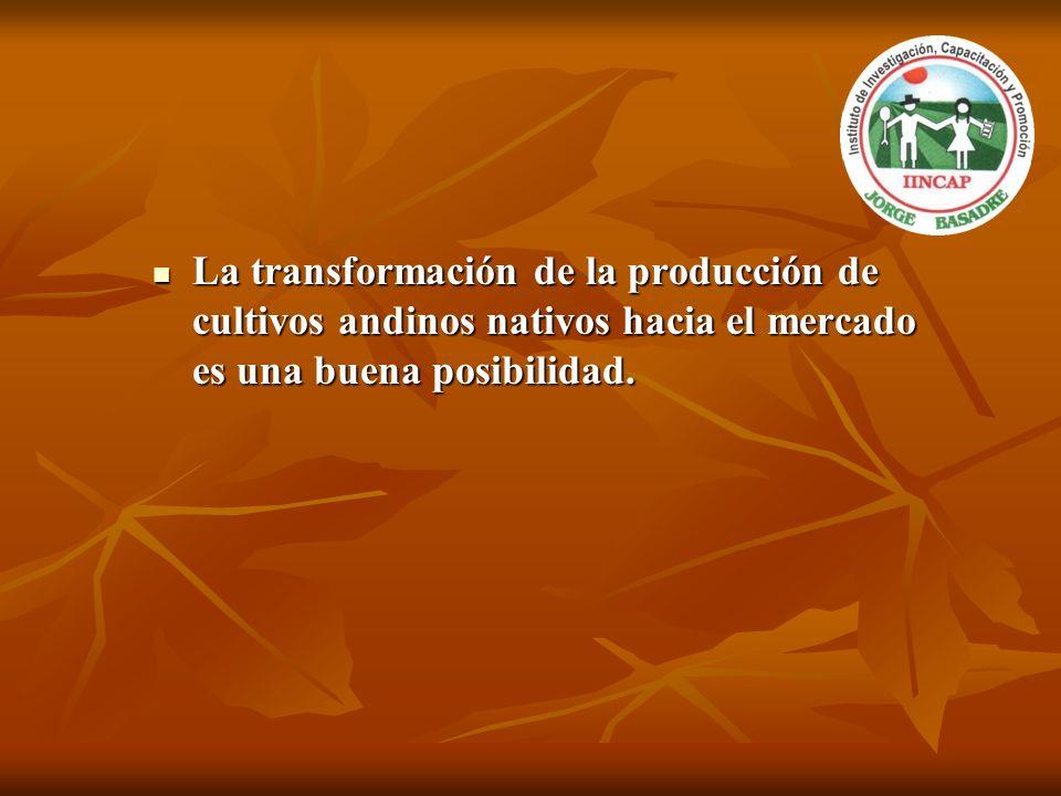 La transformación de la producción de cultivos andinos nativos hacia el mercado es una buena posibilidad. La transformación de la producción de cultiv