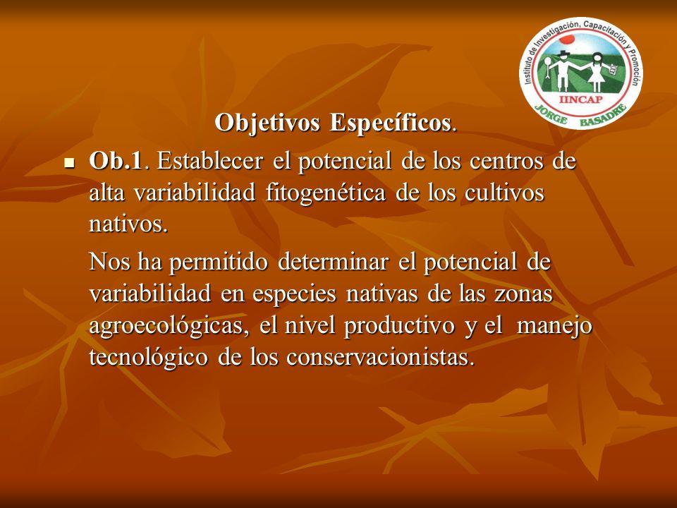Objetivos Específicos. Ob.1. Establecer el potencial de los centros de alta variabilidad fitogenética de los cultivos nativos. Ob.1. Establecer el pot