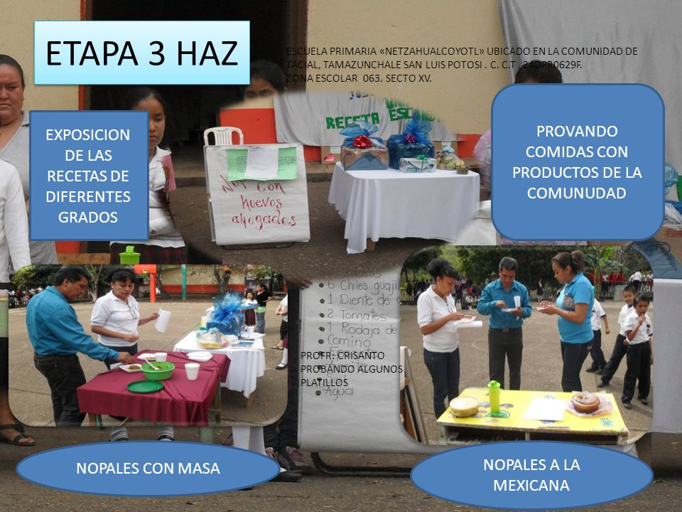 ETAPA 3 HAZ PROVANDO COMIDAS CON PRODUCTOS DE LA COMUNUDAD EXPOSICION DE LAS RECETAS DE DIFERENTES GRADOS NOPALES A LA MEXICANA NOPALES CON MASA PROFR