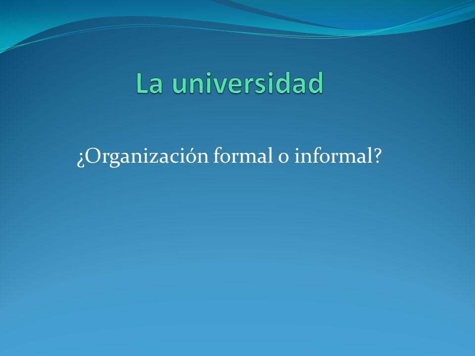 ¿Organización formal o informal?