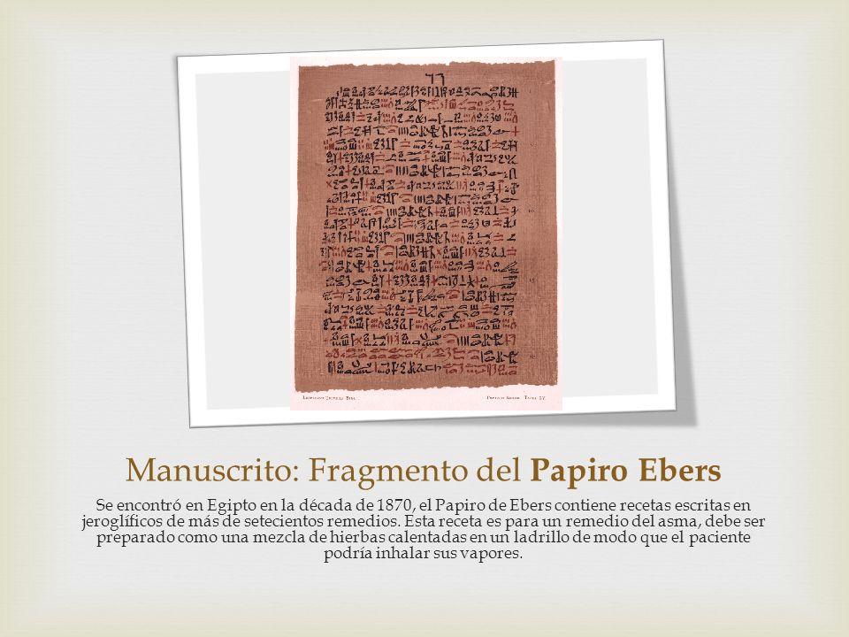 Manuscrito: Fragmento del Papiro Ebers Se encontró en Egipto en la década de 1870, el Papiro de Ebers contiene recetas escritas en jeroglíficos de más