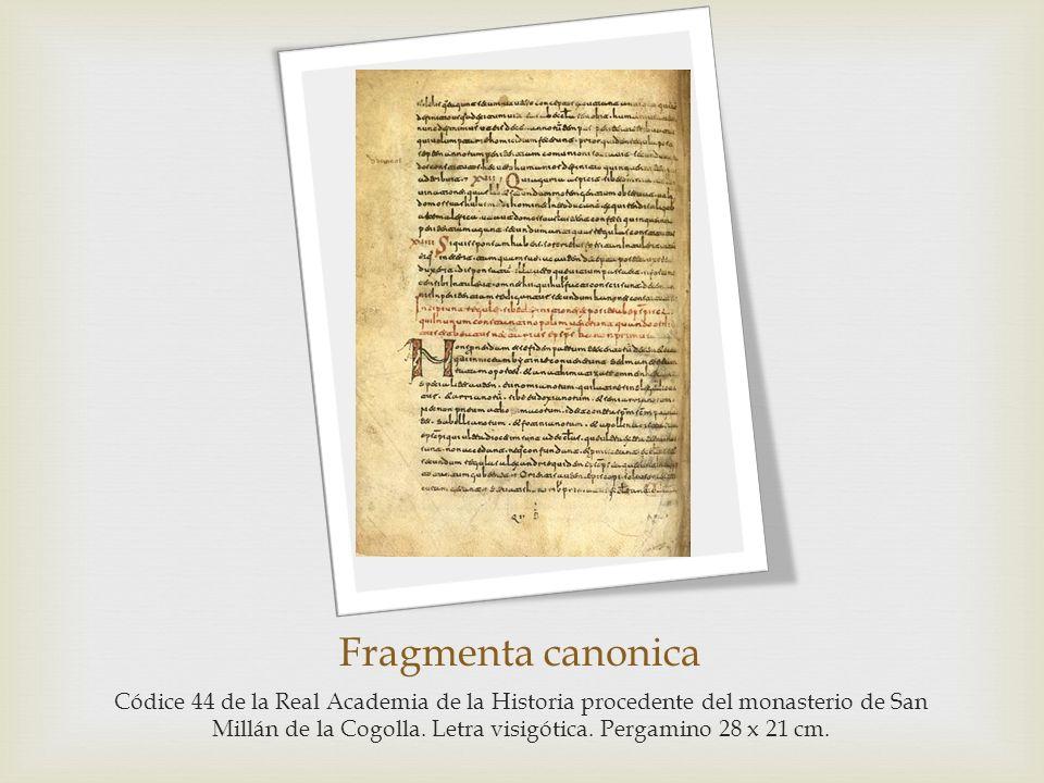 Fragmenta canonica Códice 44 de la Real Academia de la Historia procedente del monasterio de San Millán de la Cogolla. Letra visigótica. Pergamino 28
