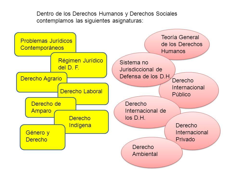 Dentro de los Derechos Humanos y Derechos Sociales contemplamos las siguientes asignaturas: Problemas Jurídicos Contemporáneos Régimen Jurídico del D.