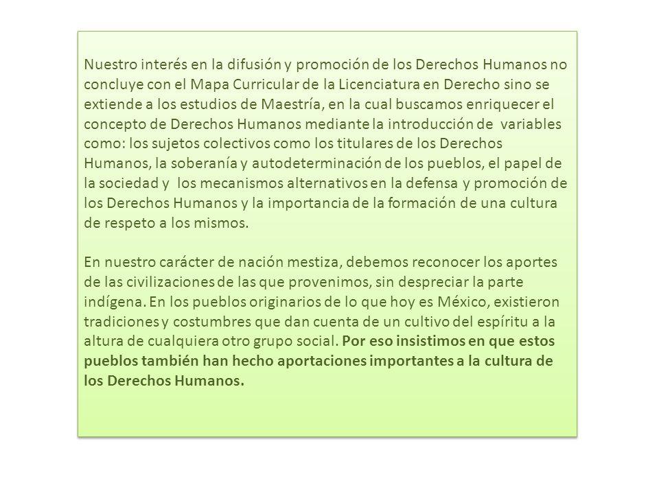 La maestría está integrada por tres dimensiones: la histórico- filosófica, la jurídica y el contexto económico y político de los Derechos Humanos, además de un eje metodológico-investigativo.