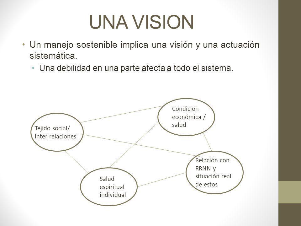 UNA VISION Un manejo sostenible implica una visión y una actuación sistemática. Una debilidad en una parte afecta a todo el sistema. Tejido social/ in
