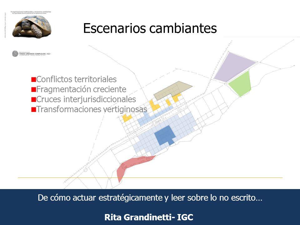 Escenarios cambiantes Rita Grandinetti- IGC Conflictos territoriales Fragmentación creciente Cruces interjurisdiccionales Transformaciones vertiginosa